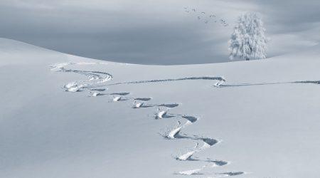 besneeuwde heuvel met twee ski sporen